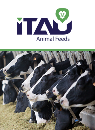 ITAU Animal Feeds